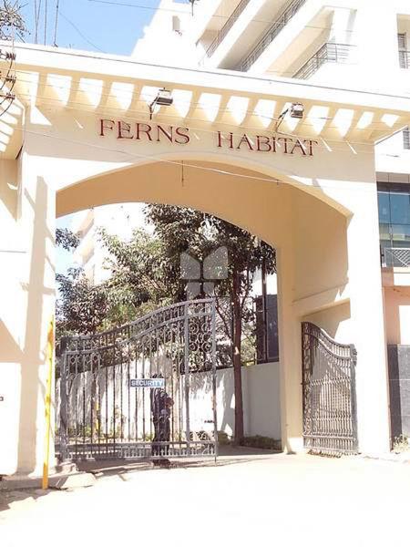 Fern Habitat - Elevation Photo