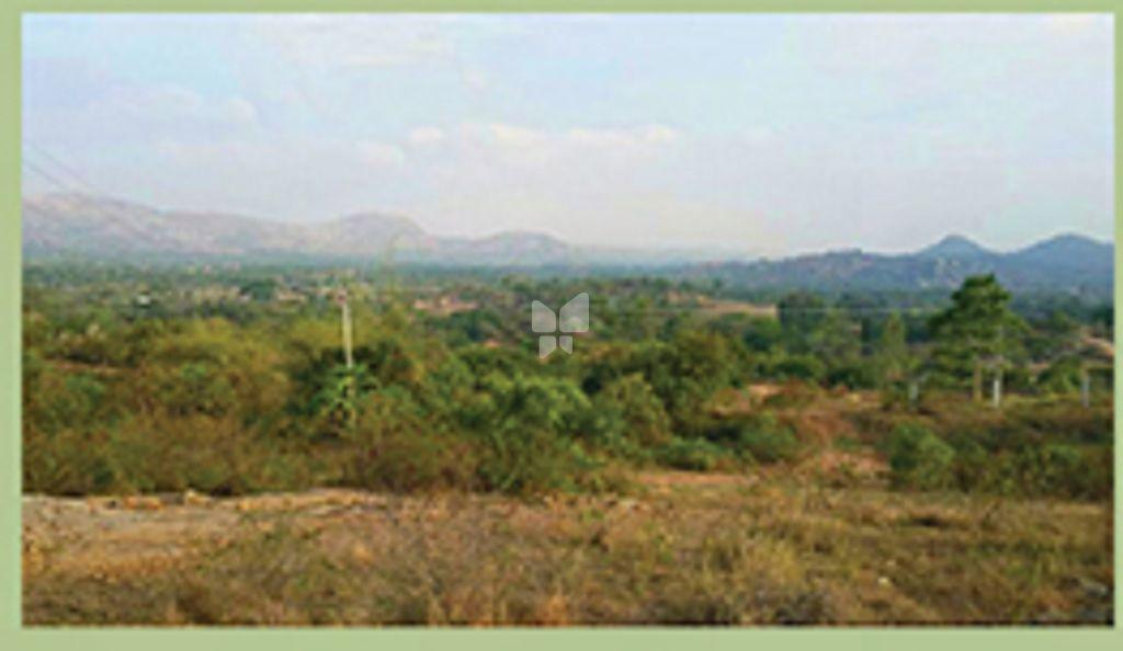 SKC Rainforest Phase I - Project Images