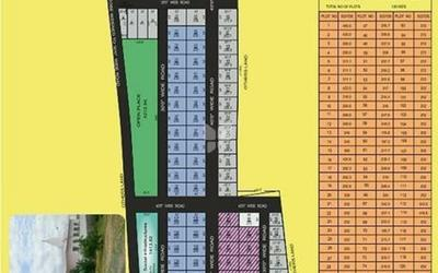 prakrutis-hyde-park-in-adibatla-master-plan-1cwf