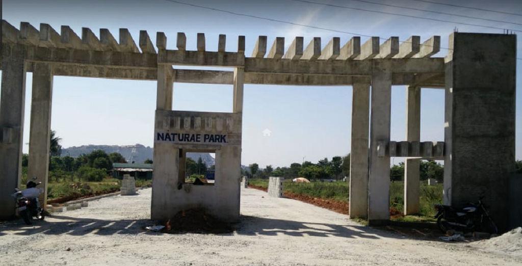Nature Park - Project Images