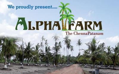 alpha-farms-in-mahabalipuram-elevation-photo-1jtr