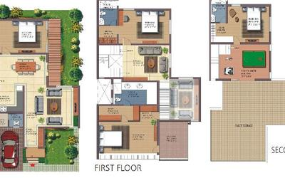 nature-walk-in-whitefield-5in