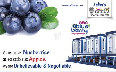salims-blue-berry-in-iyyapanthangal-elevation-photo-fgw