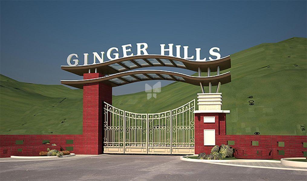 Ginger Hills Phase II - Elevation Photo