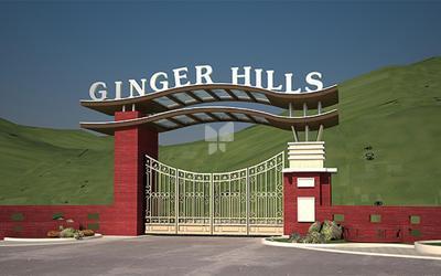 ginger-hills-phase-ii-in-shahad-elevation-photo-1ukr