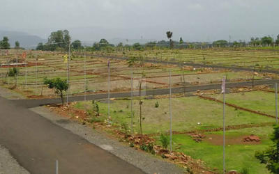 dabc-iris-garden-in-179-1579608709694