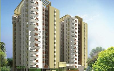 olety-landmark-in-basaveshwara-nagar-6xs