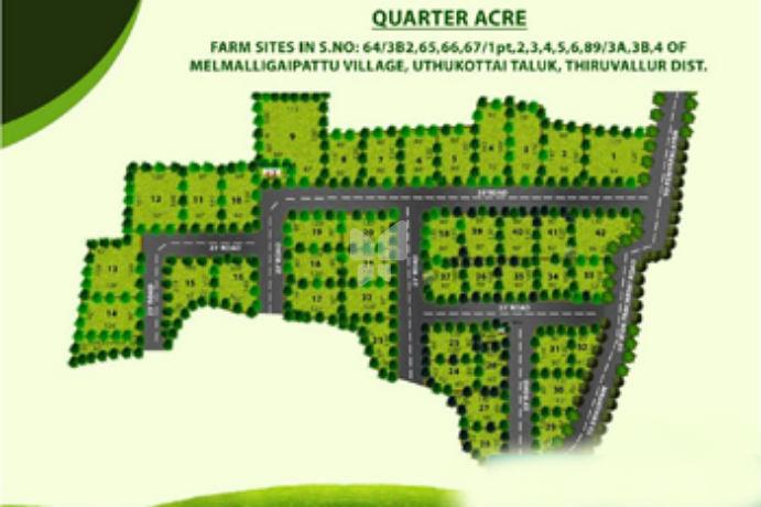 MCB Aassetz Quarter Acre - Master Plan