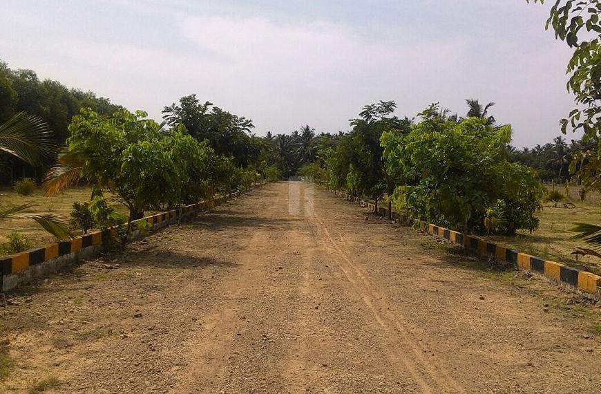 ONYX Kadapakkam - Elevation Photo