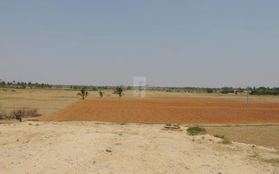 skandagiri-county-in-chikkaballapur-elevation-photo-xeb