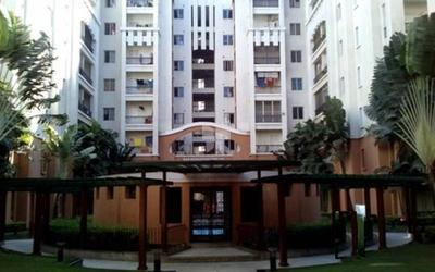 b-b-oakyard-i-in-jayanagar-1st-block-elevation-photo-ppg